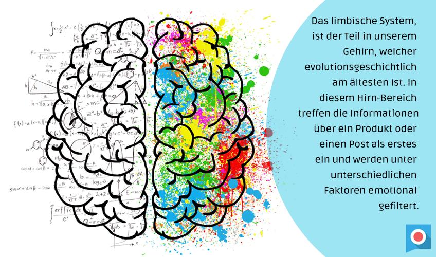 limbisches_system_social_media_texte_schreiben